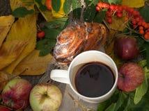 En kopp av starkt svart te, den söta bullen med russin, askabär, äpplen och färgrika höstsidor på en sten ytbehandlar Royaltyfri Fotografi