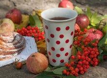 En kopp av starkt svart te, den söta bullen med russin, askabär, äpplen och färgrika höstsidor på en sten ytbehandlar Fotografering för Bildbyråer