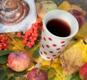 En kopp av starkt svart te, den söta bullen med russin, askabär, äpplen och färgrika höstsidor på en sten ytbehandlar Arkivfoton