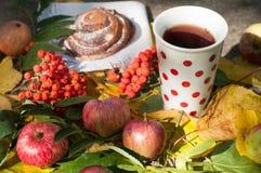 En kopp av starkt svart te, den söta bullen med russin, askabär, äpplen och färgrika höstsidor på en sten ytbehandlar Royaltyfria Foton