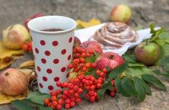 En kopp av starkt svart te, den söta bullen med russin, askabär, äpplen och färgrika höstsidor på en sten ytbehandlar Arkivfoto