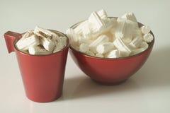 En kopp kaffe eller en varm choklad med marshmallower och en röd platta på en vit bakgrund close upp behandla som ett barn fotoet royaltyfri illustrationer