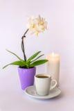 En kopp kaffe, en liten vit orkidé och en brinnande stearinljus Arkivbild