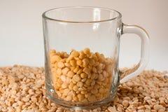 En kopp med ärtagryn på ärtagryn Fotografering för Bildbyråer