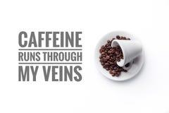 En kopp som fylls med kaffebönor på vita KÖRNINGAR för bakgrunds- och meddelande`-KOFFEIN TILL OCH MED MIN ÅDER`, royaltyfria foton
