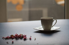 En kopp te i rummet Royaltyfria Bilder