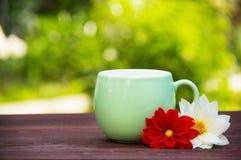 En kopp te i sommarträdgården Råna och blommor på en grön suddig bakgrund kopiera avstånd Fotografering för Bildbyråer