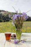 En kopp te, kex och lösa iriers Arkivfoto