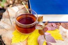 En kopp te och en gul lönnlöv nära en bok i höstskogen på en stump_ arkivfoto