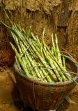 En korg av bambuforsen nära en vägg för torrt gräs Royaltyfria Bilder