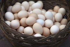 En korg mycket av ägg royaltyfria foton