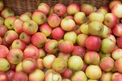 En korg mycket av till salu organiska äpplen Arkivbilder