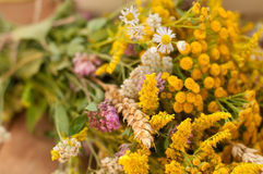 En korg som fylldes med mogna bär, och en bukett av sparade blommor på en träyttersida dekorerade med höfter och höstsidor Royaltyfria Foton
