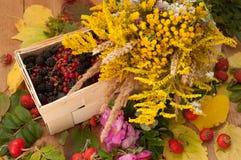 En korg som fylldes med mogna bär, och en bukett av sparade blommor på en träyttersida dekorerade med höfter och höstsidor Arkivfoto