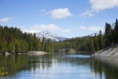 En krökning i Yellowstonet River på en solig eftermiddag Royaltyfri Bild