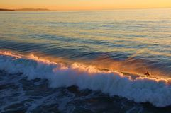 En krabb solnedgång arkivbilder