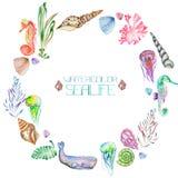 En krans (cirkelram) med vattenfärgskalen, seahorses, manet, havsväxt och andra havsbeståndsdelar stock illustrationer