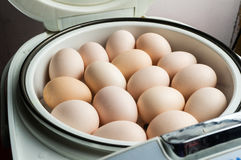 En kruka av ägg arkivfoton