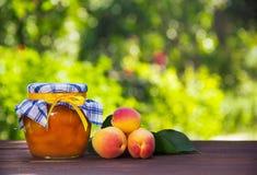 En krus av hemlagat driftstopp och saftiga mogna aprikors på tabellen Sommarfrukter och efterrätter säsongsbetonad avskild white  Royaltyfria Bilder
