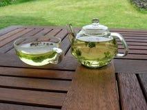 En kupa av tea Royaltyfri Fotografi