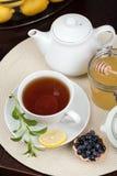 En kupa av tea Royaltyfria Foton