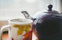 En kupa av tea Fotografering för Bildbyråer