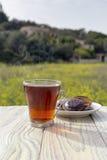 En kupa av tea och kexar Fotografering för Bildbyråer