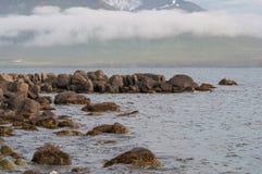 En kust i den icelandic bygden Arkivbilder