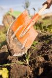 En kvinna gräver en trädgård med en skyffel Arkivfoton