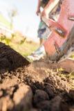 En kvinna gräver en trädgård med en skyffel Royaltyfria Bilder