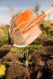 En kvinna gräver en trädgård med en skyffel Royaltyfri Foto