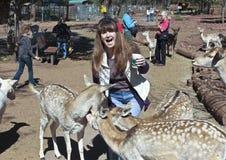 En kvinna har gyckel som matar hjortarna Royaltyfri Bild