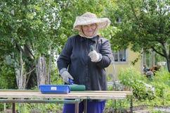 En kvinna i landsfärgerna av brädet och är lycklig med hans arbete Royaltyfri Foto