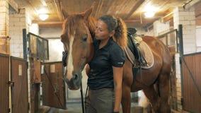 En kvinna och en brun häst i ett stall, slut upp arkivfilmer
