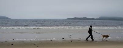 En kvinna och en hund nära havet arkivbild