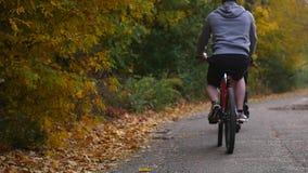 En kvinna och en man som rider en cykel om höstdagen arkivfilmer