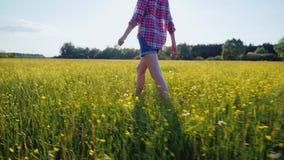 En kvinna promenerar en härlig äng med blommor på solnedgången, endast benen är synlig i ramen stock video