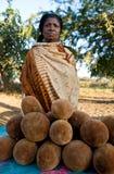 En kvinna säljer frukt av baobabträdet i gränden av baobabs i ottan Royaltyfri Bild