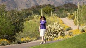 En kvinna som går i den Sonoran öknen Arkivbild