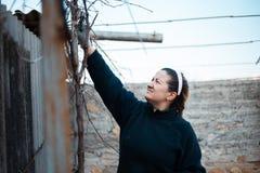 En kvinna som hårt arbetar i vingården royaltyfria bilder