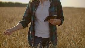 En kvinnabonde med minnestavlan Smart lantbruk och digitalt jordbruk arkivfilmer