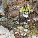 En kvinnafotvandrare korsar en Forest Creek Fotografering för Bildbyråer