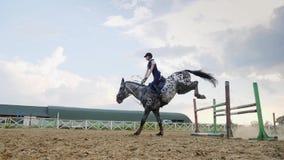 En kvinnajockey hoppar över barriärerna på en häst i en hoppa konkurrens, ultrarapid arkivfilmer