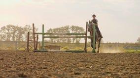 En kvinnajockey hoppar över barriärerna på en häst under solnedgången, ultrarapid stock video