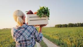 En kvinnlig bonde med en ask av nya grönsaker promenerar hennes fält Sunt äta och nya grönsaker tillbaka sikt stock video