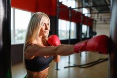 En kvinnlig boxare utbildar i en idrottshall som bär röda handskar fotografering för bildbyråer