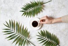 En kvinnlig hand rymmer en kopp av svart espresso på en vit konkret bakgrund Vila i varmt tropiskt landsbegrepp arkivfoton