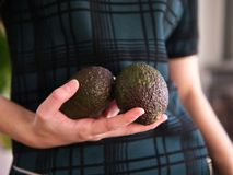En kvinnlig hand som rymmer två avokadon royaltyfri foto