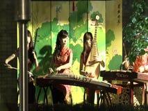 En kvinnlig konstnär som spelar Guzhengen stock video