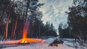En lägereld i vinterträna Arkivfoto